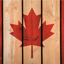 Minecraft Server icon for New New Canada