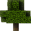 Minecraft Server icon for MCForest