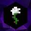 Minecraft Server icon for White Rose