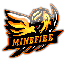 Minecraft Server icon for Minefire