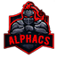 Minecraft Server icon for play.alphacs.ro