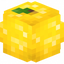 Minecraft Server icon for LEMON