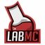 Minecraft Server icon for LabMC