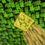 Minecraft Server icon for stef263