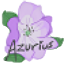 Minecraft Server icon for Azurius