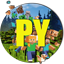 Minecraft Server icon for ProjectYellow