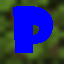 Minecraft Server icon for Pekara SkyBlock