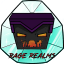 Minecraft Server icon for RageRealms