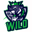 Minecraft Server icon for Wild PvP