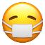 Minecraft Server icon for Quarantine Especiales