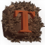 Minecraft Server icon for TormentMC