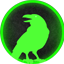 Minecraft Server icon for RavenSG