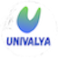 Minecraft Server icon for Univalya