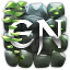 Minecraft Server icon for Euphoria Network