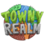 Minecraft Server icon for TownyRealm