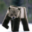 Minecraft Server icon for BearCraft