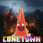 Minecraft Server icon for ConeTown SMP