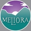 Minecraft Server icon for Meliora Network