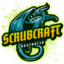 Minecraft Server icon for ScrubCraft