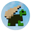Minecraft Server icon for Flying Turtles