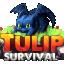 Minecraft Server icon for TulipSurvival