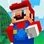 Minecraft Server icon for NintendoCraft Network