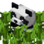 Minecraft Server icon for TropicalBamboo