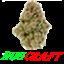 Minecraft Server icon for NugCraft