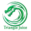 Minecraft Server icon for Triangle Juice