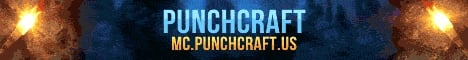 Punchcraft Network